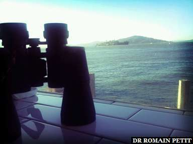Vue sur Alcatraz depuis le restaurant Franciscan Crab