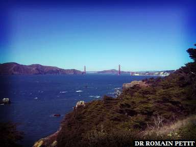 Golden Gate Bridge depuis Lincoln Park