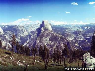 Half Dome au parc Yosemite