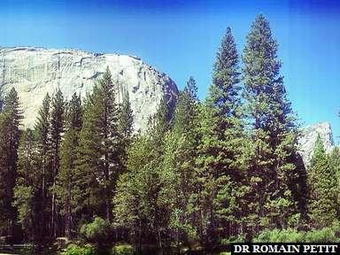 El Capitan au parc Yosemite