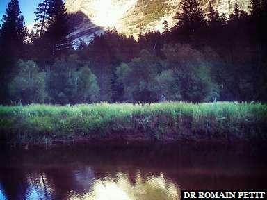 Mirror Lake au parc Yosemite