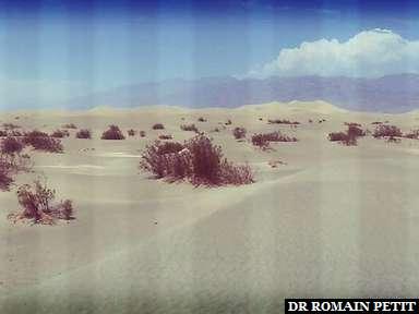 Sand Dunes à Death Valley