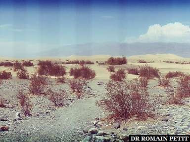 La chaleur tue à Death Valley