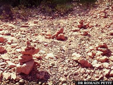 Ma contribution dans l'arbre à gauche, Bryce Canyon