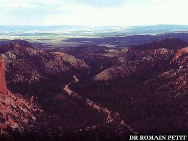 Bryce Canyon 19