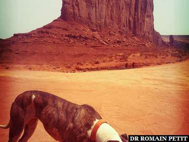 Un ami Navajo à Monument Valley