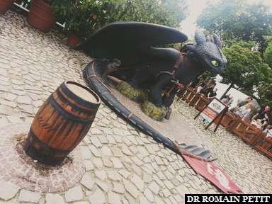 Toothless aka Krokmou du film Dragons (2010)