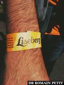 Journée à Liseberg, parc d'attractions à Göteborg.