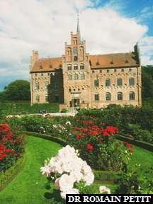 Château d'Egeskov et ses roses.