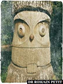 Sculpture sur bois de la Chouette