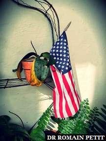 Drapeau américain planté dans un pot avec une plante qui a un peu soif