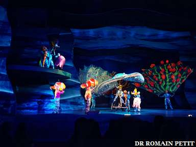 Spectacle Finding Nemo - The Musical à Disney's Animal Kingdom