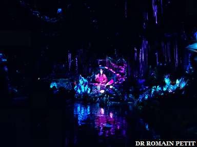Shaman of Songs vu de loin dans l'attraction Na'vi River Journey (Avatar) à Disney's Animal Kingdom