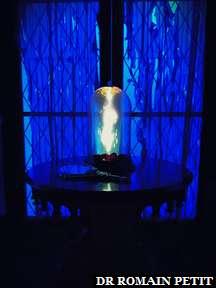 La rose et le miroir dans le restaurant Be Our Guest (La Belle et la Bête) à Magic Kingdom Park