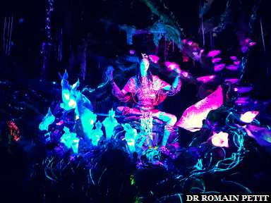 Shaman of Songs dans l'attraction Na'vi River Journey (Avatar) à Disney's Animal Kingdom