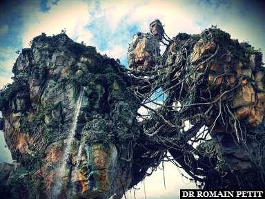 Rochers flottants à Pandora (Avatar) à Disney's Animal Kingdom