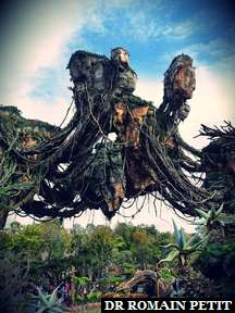 Rocher flottant à Pandora (Avatar) à Disney's Animal Kingdom