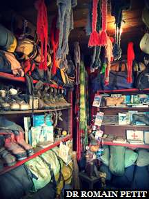 Décors de l'attraction Expedition Everest à Disney's Animal Kingdom