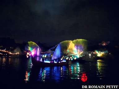 Spectacle nocturne Rivers of Light à Disney's Animal Kingdom
