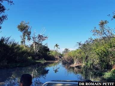 Tour en airboat au Everglades Alligator Farm dans les Everglades
