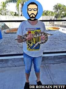 Rencontre avec un serpent au Everglades Alligator Farm dans les Everglades