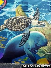 Fresque murale à Wynwood Walls à Miami 3
