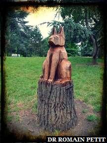 Sculpture sur bois du Chien
